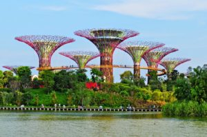 Garden by The Bay elinchow dot blogspot dot com