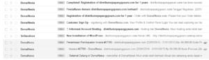 Contoh Email Balasan dari DomaiNesia