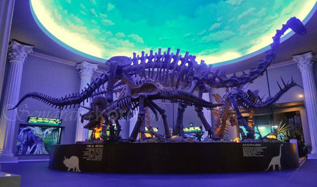 Museum Satwa yang Ada di Jatim Park 2