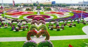 Jenis – Jenis Bunga Indah yang Ada di Dunia