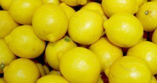 Beberapa Manfaat Jeruk Lemon yang Belum Anda Ketahui