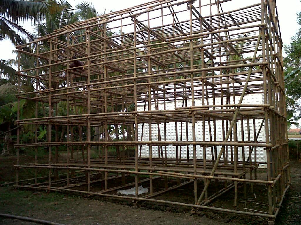 Kumbung Jamur Tiram