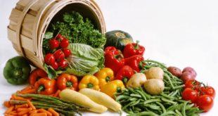 Kandungan Dalam Sayur dan Manfaat Sayuran Bagi Kesehatan Tubuh