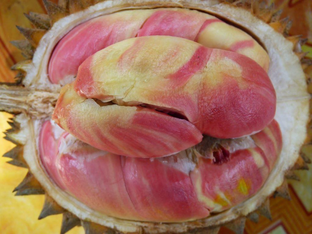 Nikmatnya-Durian-Merah-Khas-Banyuwangi