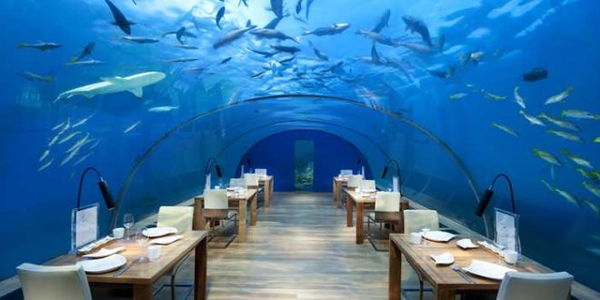 Restoran Terunik di Dunia